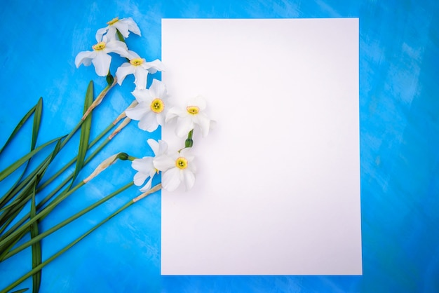 Beautiful frame with white daffodils and a piece of paper on a blue surface