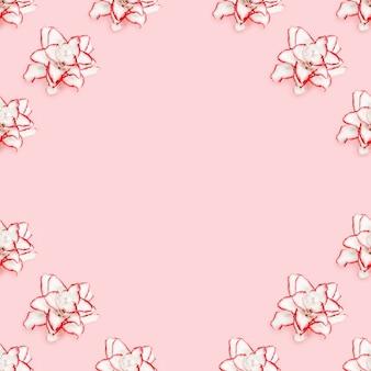 흰 모란 백합과 함께 아름다운 액자 꽃, 빨간색 테두리가있는 천연 꽃 프리미엄 사진