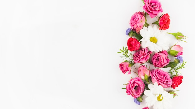 Beautiful fresh flowers against white background