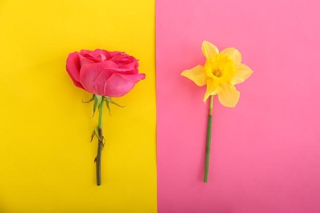 色の美しい生花