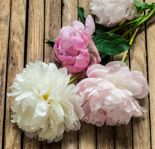 Beautiful fresh flowers on wooden background, various flowers, place for text, closeup