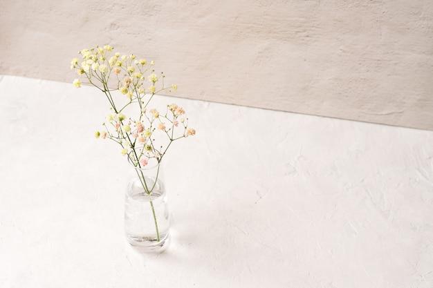 Красивая свежая гипсофила внутри бутылки с водой на белом столе