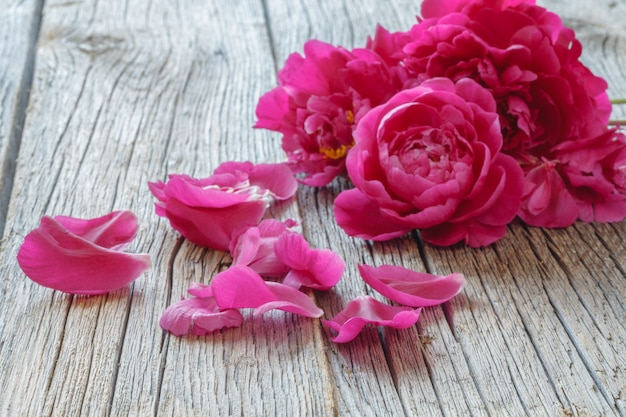Beautiful fresh peonies on wooden surface
