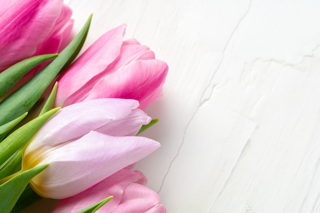 Beautiful fresh pink tulips on white wooden table close up