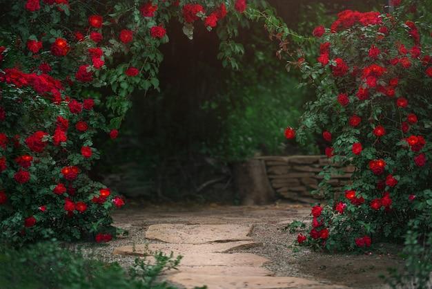 여름에 피는 장미 덤불이 있는 아름다운 정원