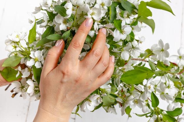 開花のリンゴの木の枝で美しい少女の手