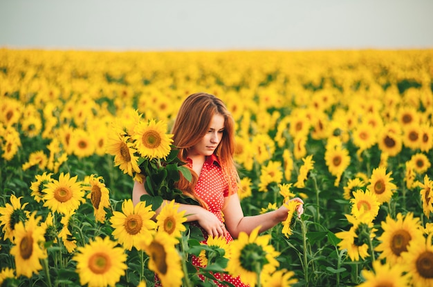 Beautiful girl in a huge yellow field of sunflowers.