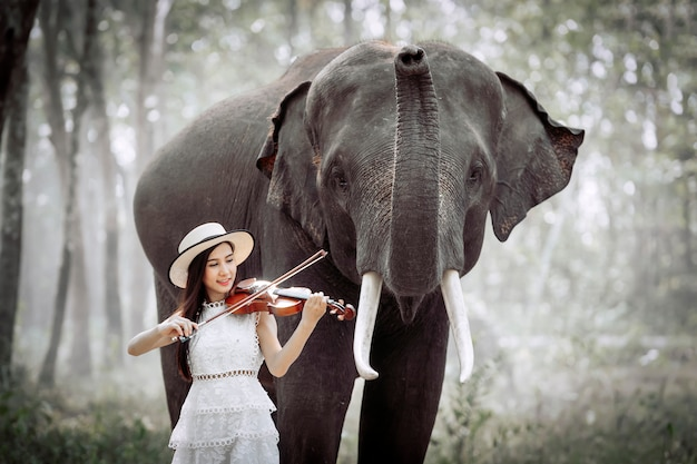 The beautiful girl is playing the violin for the elephant to listening.