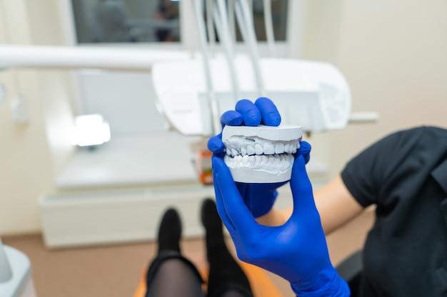 Красивая девушка профессиональный врач стоматолог ортодонт показывает гипсовую повязку челюсти