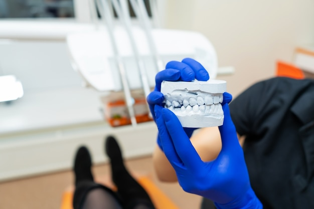 Beautiful girl professional doctor dentist orthodontist shows a plaster cast of the jaw
