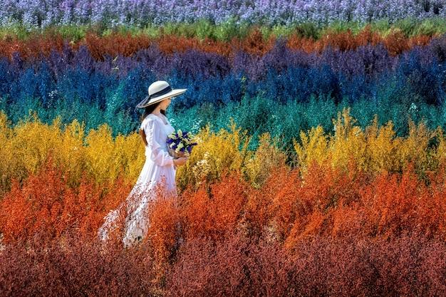 Bella ragazza in vestito bianco che si siede nei campi di fiori arcobaleno cutter, chiang mai