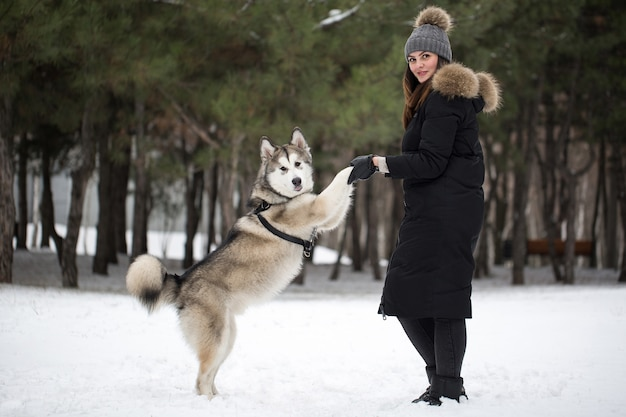 Beautiful girl in winter forest with dog. play with the dog siberian husky.