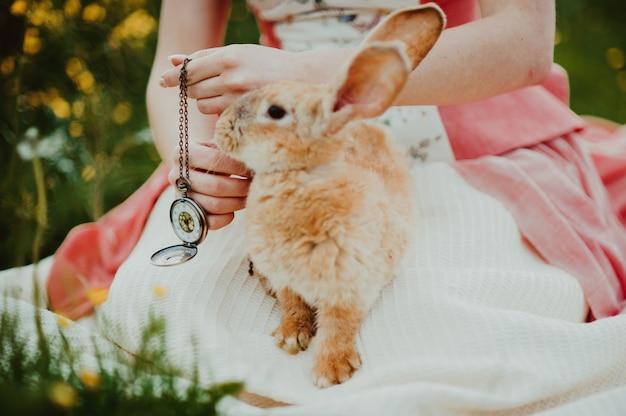 여름날 야외에서 토끼와 아름 다운 여자