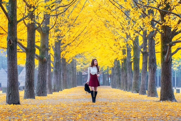 韓国、南怡島の黄色の葉を持つ美しい少女。