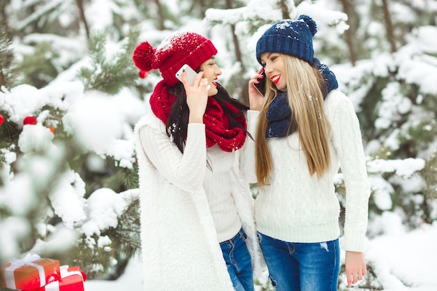 Beautiful girlfriends on the winter talking on a cell phone. two pretty cheerful women talking on mobile outdoors
