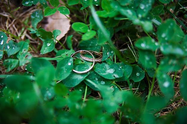 草の中にある美しい金の結婚指輪