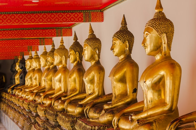 Beautiful golden buddha on the pedestal, some white walls