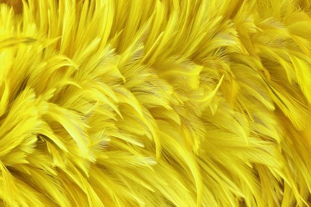 美しい黄金の黄色の鳥の羽のテクスチャ背景。