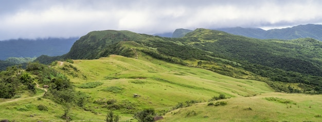 美しい草原、桃源谷の大草原、カオリンマウンテントレイルは山の頂上を通過します。台湾のwankengtou。
