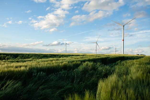 Красивое травянистое поле с ветряными мельницами вдалеке под голубым небом