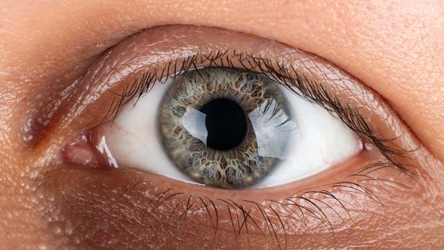 Beautiful graygreen male iris eye close up