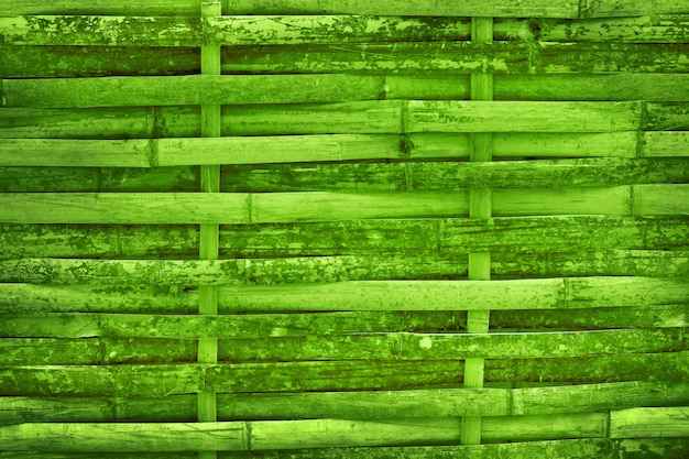 Beautiful green bamboo fence wall texture for background