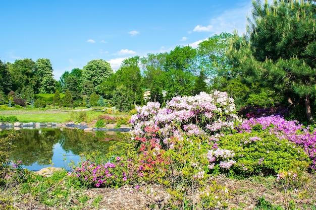 꽃, 잔디 잔디 장식 작은 연못 수영장 정원에서 아름 다운 녹색 식물 조경 디자인. 아름 다운 여름 정원 자연 배경, 개념입니다.