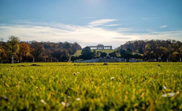 晴れた秋の日に青い空を背景に最前線のぼやけた草とオーストリアのウィーンのシェーンブルン宮殿の前の美しい緑のフィールド。