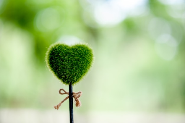 Beautiful green hand and heart images valentines day concept
