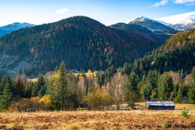 絵のように美しいウクライナの素晴らしいカルパティア山脈の色とりどりの秋の木々に覆われた美しい緑の丘