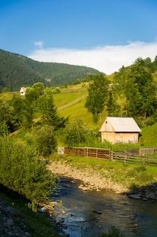 ウクライナのカルパティア山脈の美しい緑の丘。