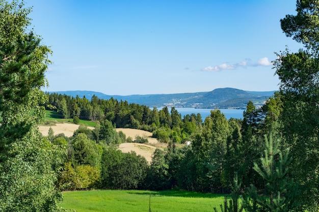 Красивый зеленый пейзаж у моря в окружении высоких скалистых гор