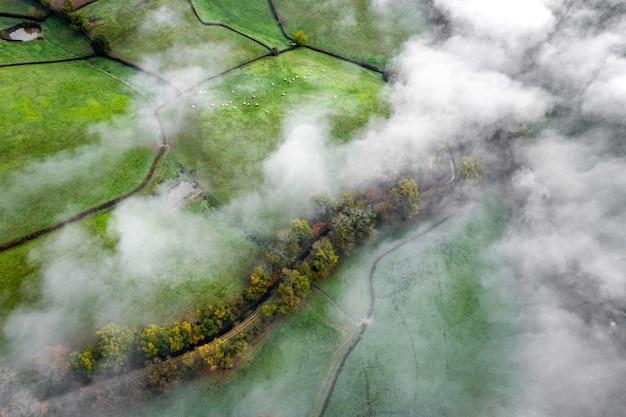흐린 하늘 아래 농장과 나무와 아름다운 녹색 풍경