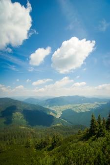 ウクライナのカルパティア山脈の美しい緑の牧草地