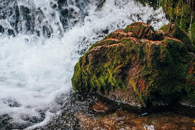 マウンテンクリークのクローズアップの速い水の中のドラゴンの頭をイメージした美しい緑の苔むした岩。滝の石に苔のある風景。野生の小さな川の岩のある素晴らしい景色。