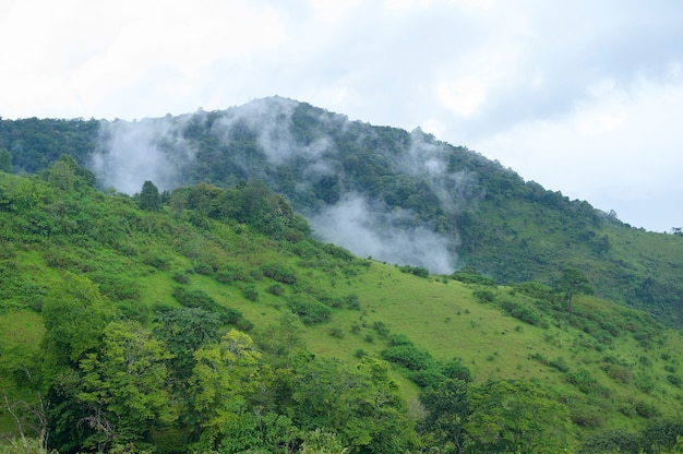 Beautiful green mountain view in rain season, tropical climate .