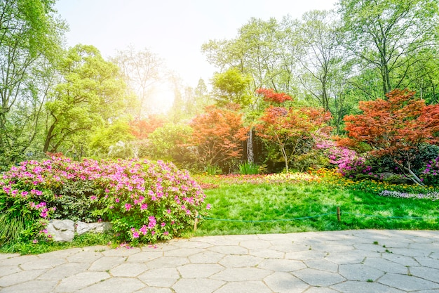 아름다운 녹색 공원
