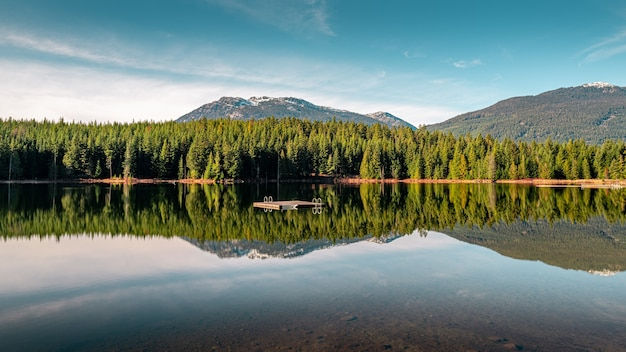 Beautiful green scenery reflecting in the lost lake in whistler, bc canada