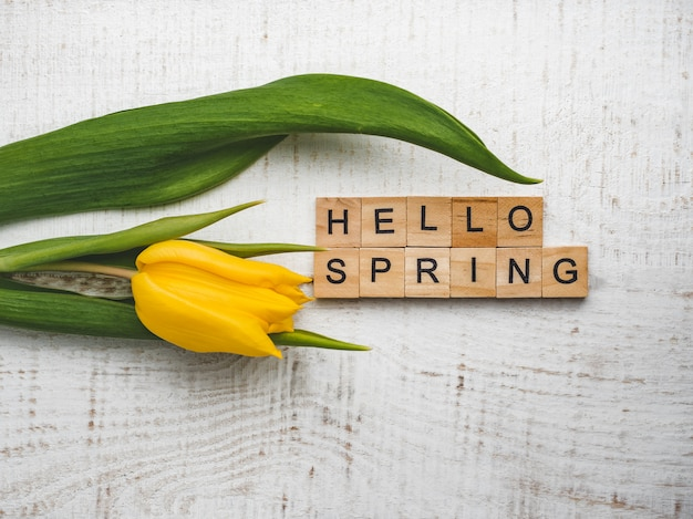 春という言葉で美しいグリーティングカード
