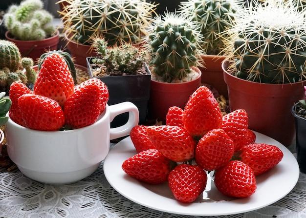 美しいグループの新鮮な赤いイチゴとサボテンと多肉植物の背景