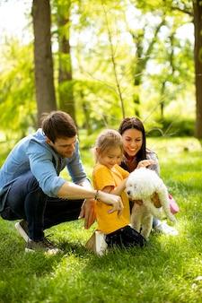 美しい幸せな家族は公園で屋外でビション犬と楽しんでいます