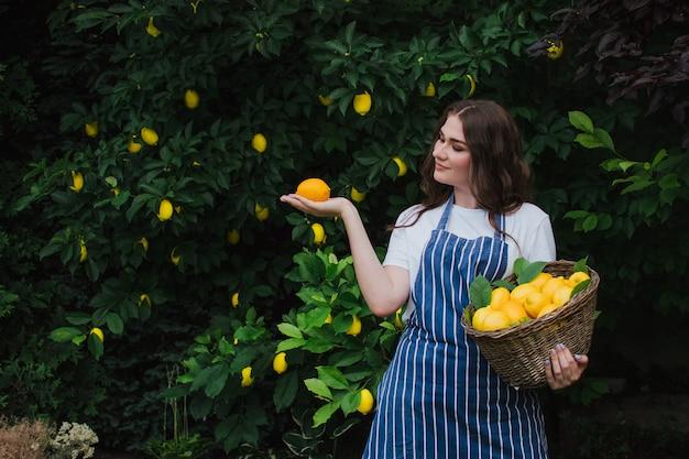 아름다운 행복한 소녀 농부는 레모네이드 바구니 광고에서 레몬 수확을 수집합니다