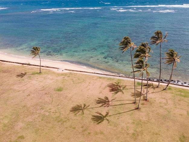 Bellissimo paesaggio hawaiiano con oceano