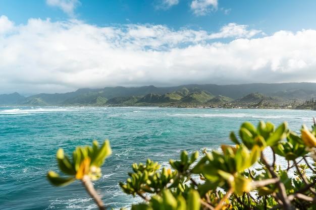 青い海と美しいハワイの風景