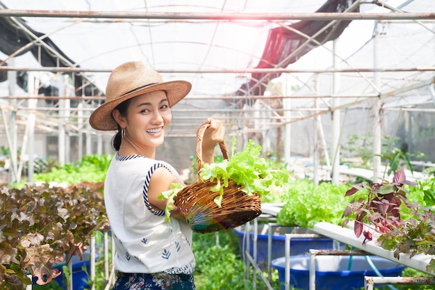 Beautiful healthy woman holding salad vegetables in hydroponics farm
