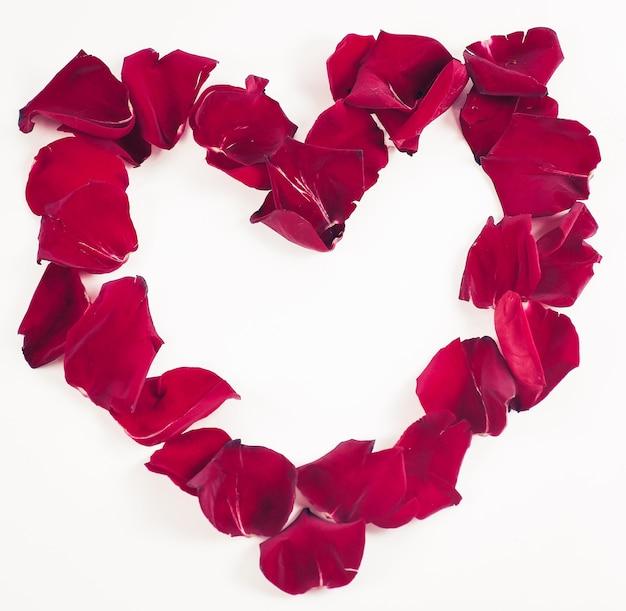 赤いバラの花びらの美しい心