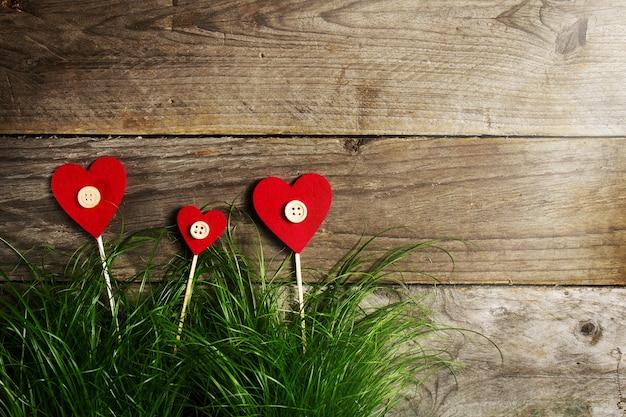 Fiori beautiful hearts su erba verde, san valentino o concetto di amore.