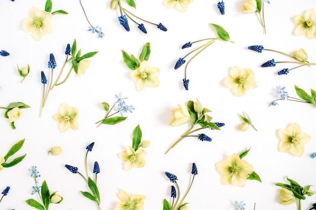 美しいヘレボルスの花、ムスカリの花、葉。フラット レイアウト、トップ ビュー。