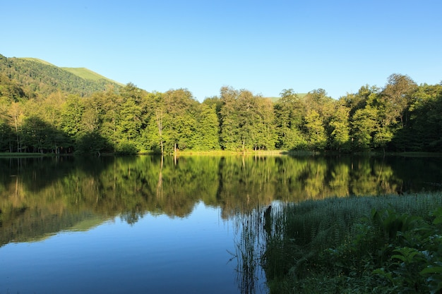 Beautiful high angle shot of the green scenery reflecting in the gosh lake, armenia