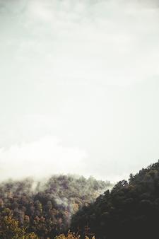 美しい丘と空
